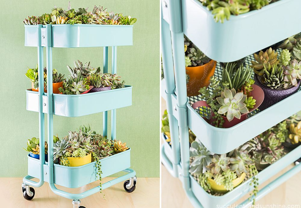 Mobile DIY succulent planter idea