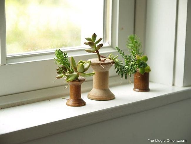Thread Spool Planters