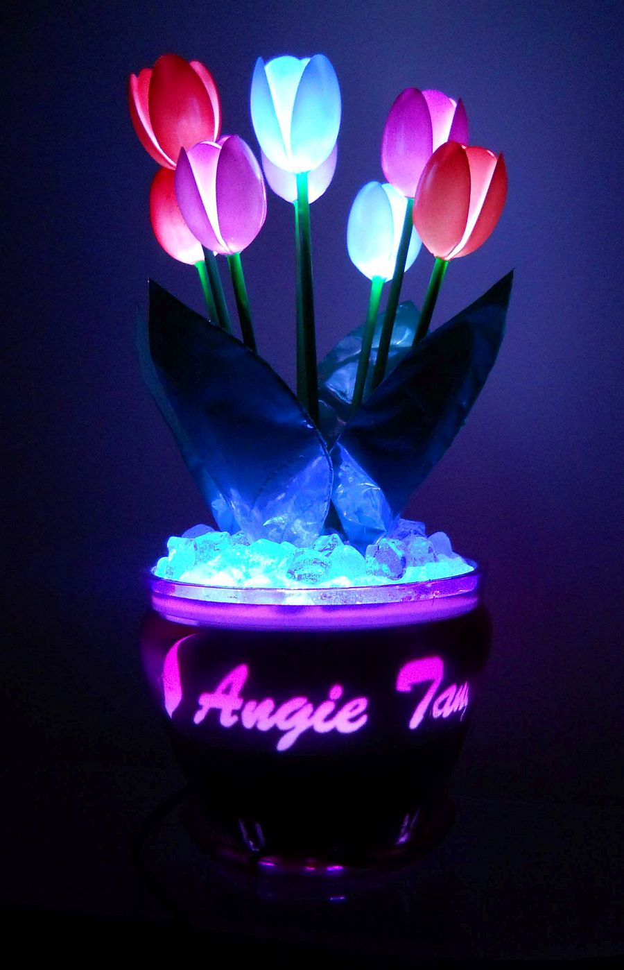 Tulip lamps
