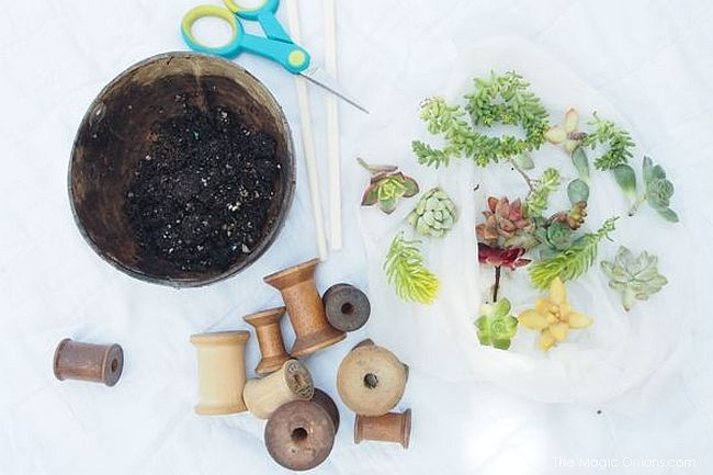Turn those old thread spools into smart DIY planters