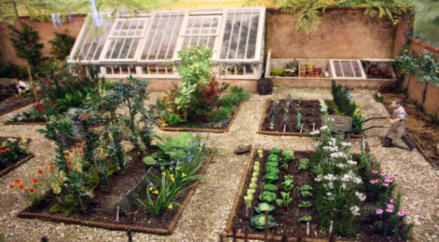 How to plan a vegetable garden for Vegetable plot ideas