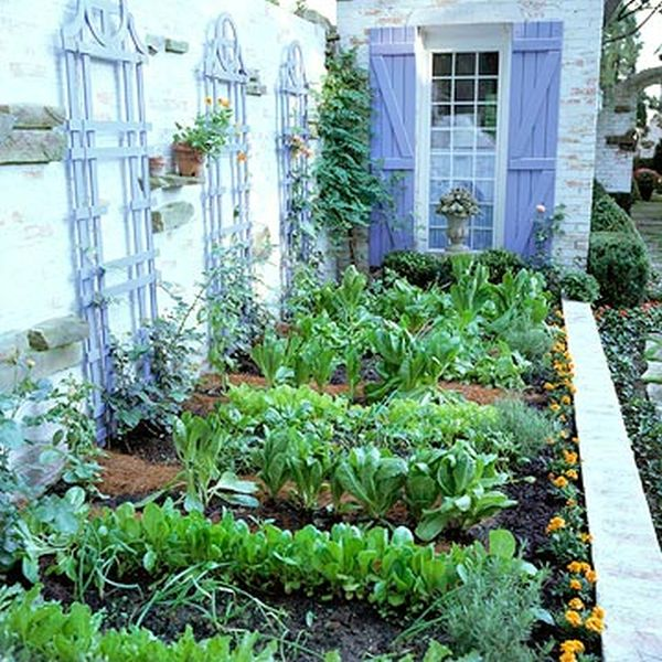 backyard vegetable garden idea How to Plan a Vegetable Garden