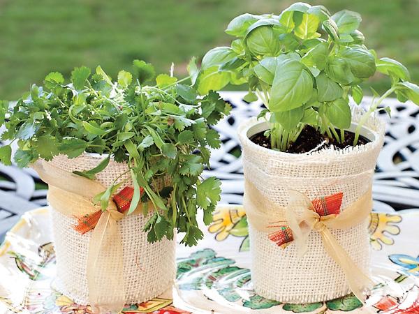 herb-garden-favor