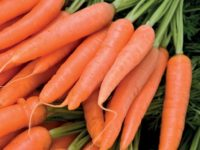 Carrots 200x150 8 Delicious Seeds to Sow in February