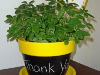 Chalkboard Flower Pot 200x150 Want To Decorate Your Flower Pots? Try These Ideas!