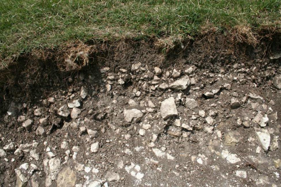 Chalky Soil