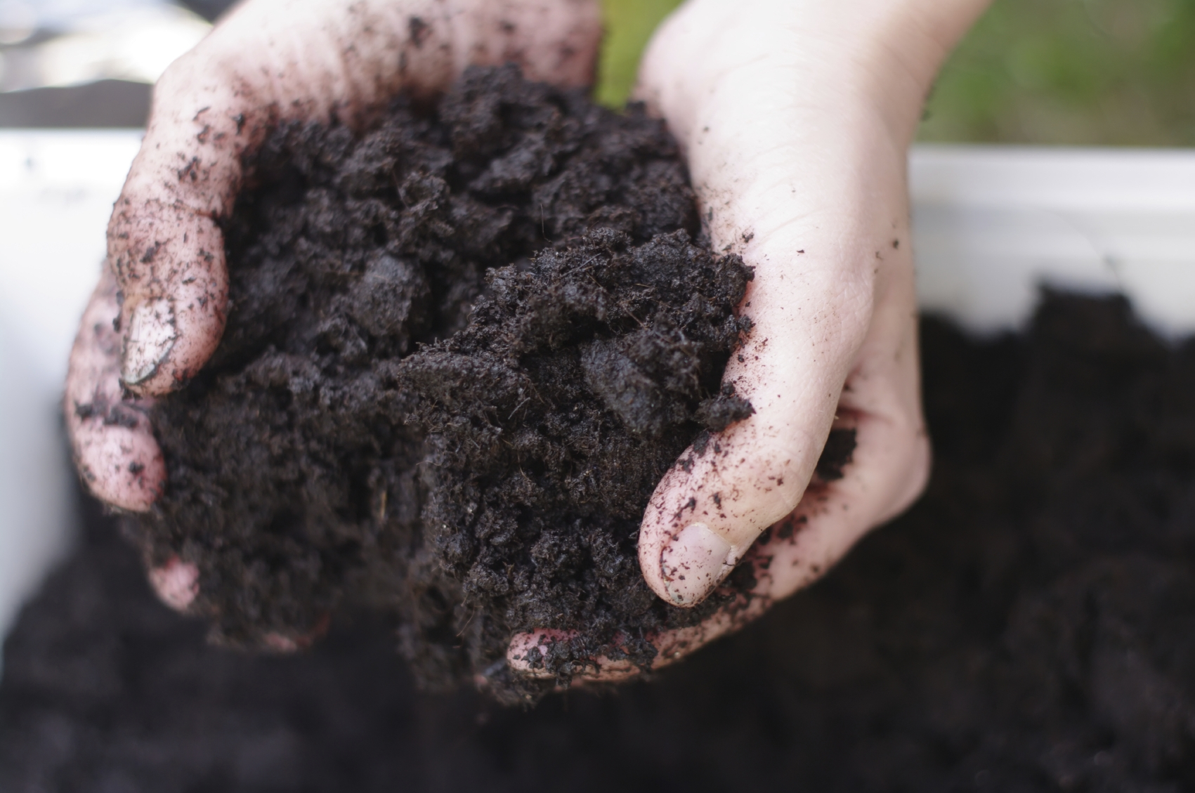 Clay Soil 6 Types of Soil: How to Make the Most of Your Garden Soil?