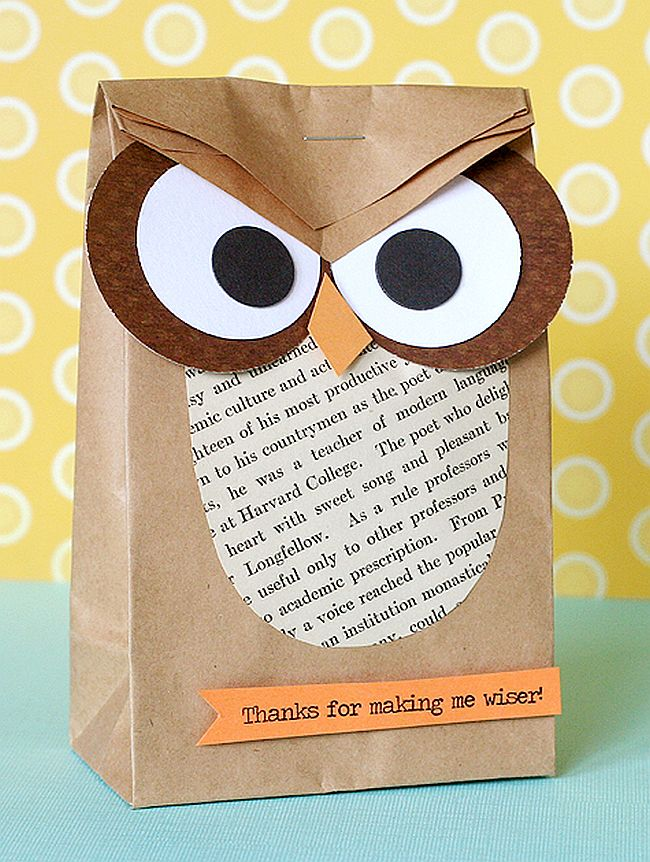 Cute owl paper bag gift bag