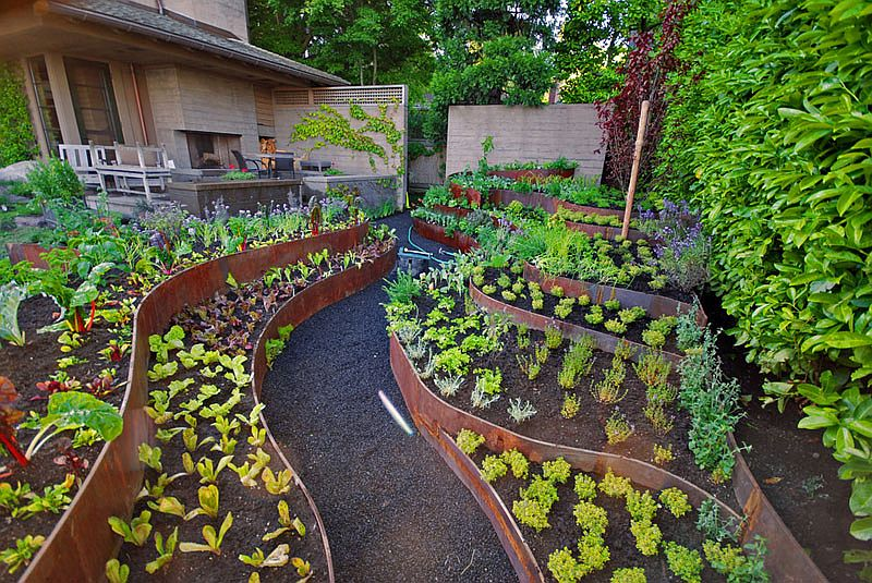 6 Types Of Soil: How To Make The Most Of Your Garden Soil?