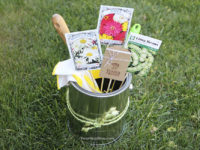 Gardening Gift 200x150 Last Minute Crafting: Gorgeous DIY Mothers Day Gifts