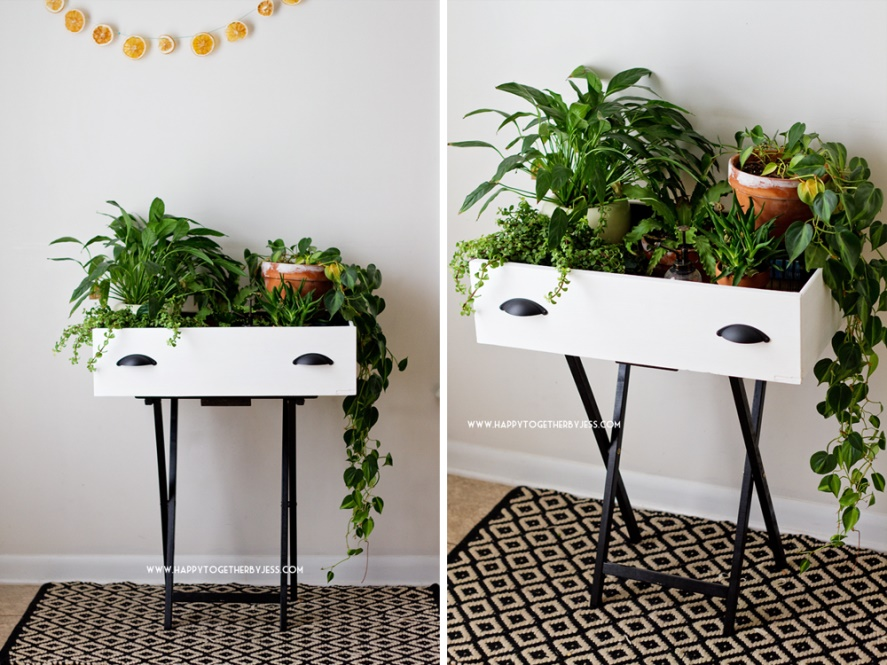 Drawer Plant Stand