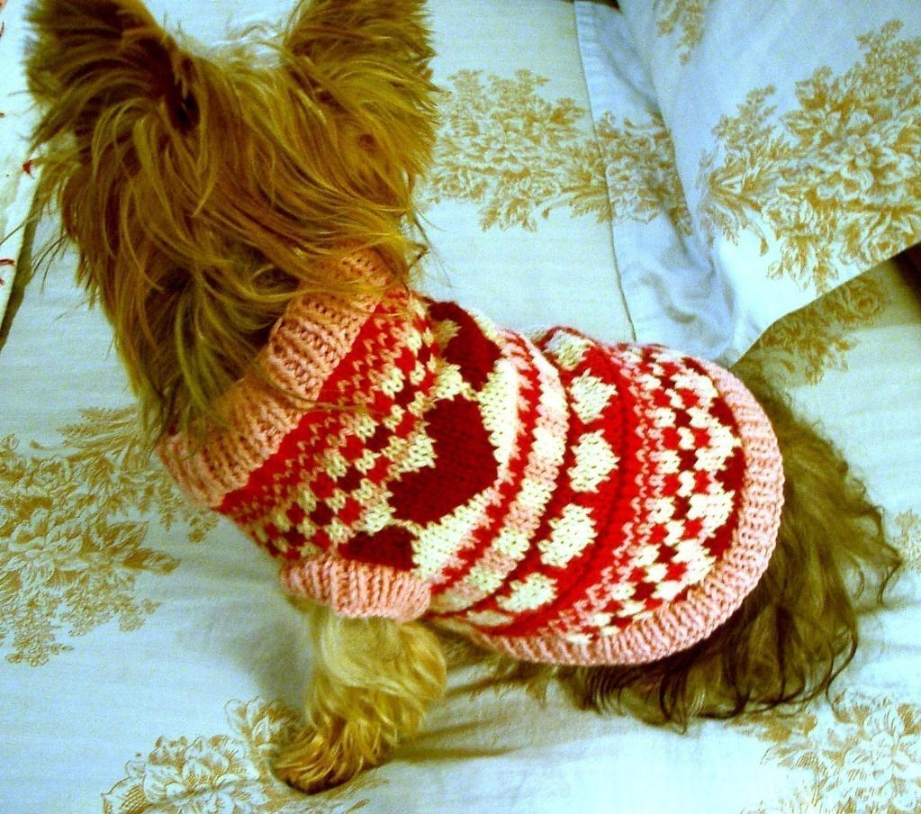 Warm Dog Sweaters