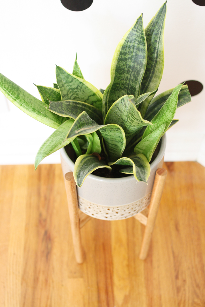 amazing diy planter stands for your plants