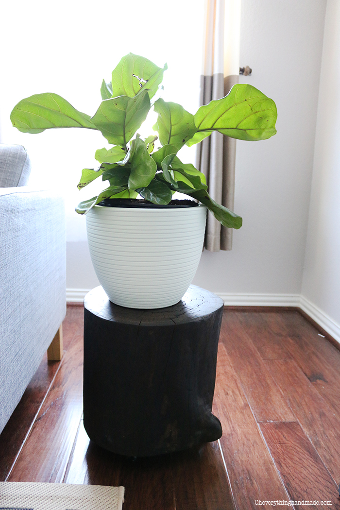 Wood Stump Plant Stand