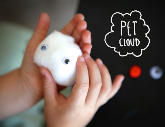 Pet cloud