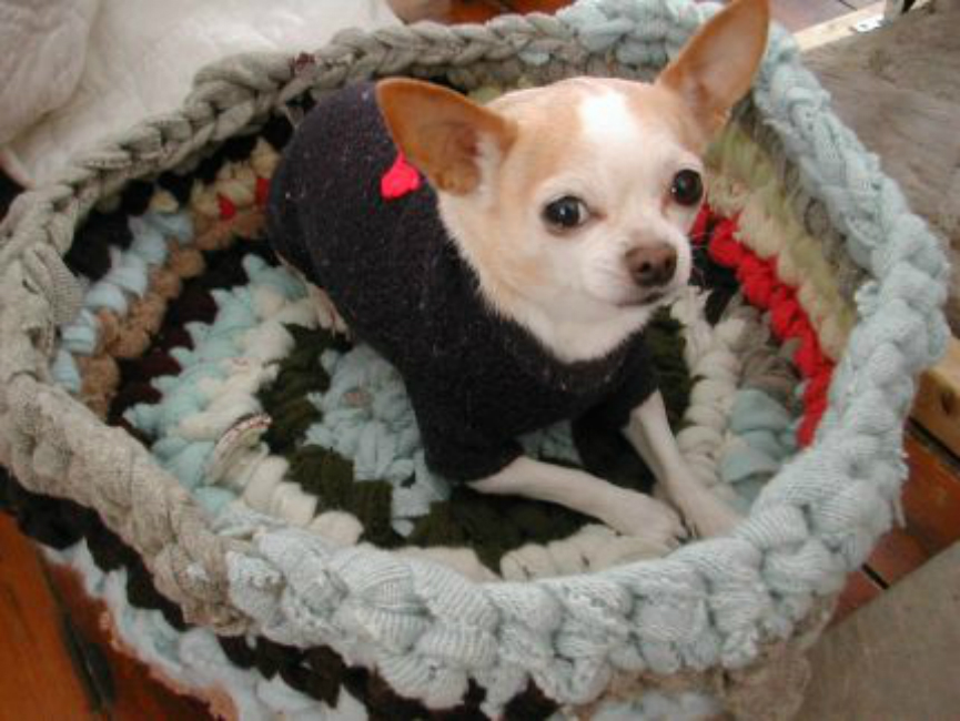 Recycled T-Shirt Pet Bed