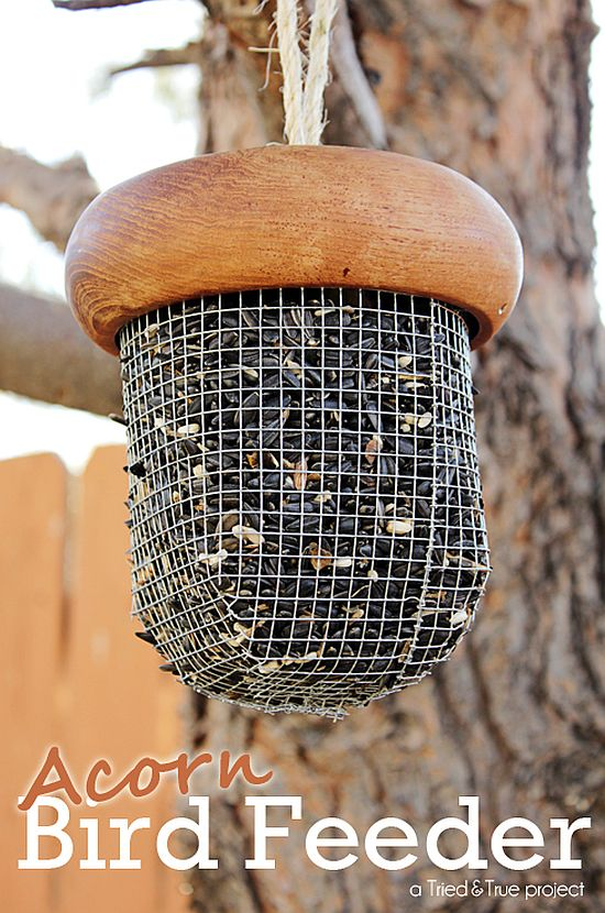 Upcycled Acorn Bird Feeder