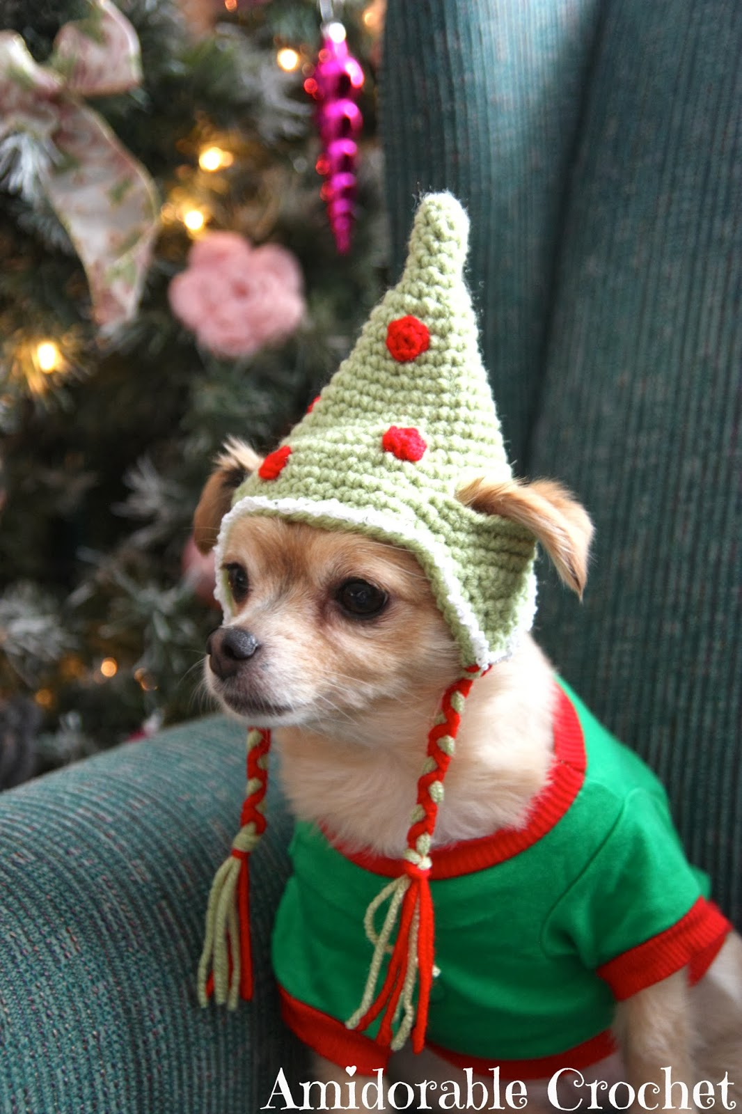 Christmas Hats For Dogs.These Free Crochet Patterns Will Give You The Best Dressed