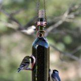 These Upcycled DIY Bird Feeders Are the Perfect Addition to Your Backyard