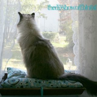How To Make a Window Seat For Your Kitty