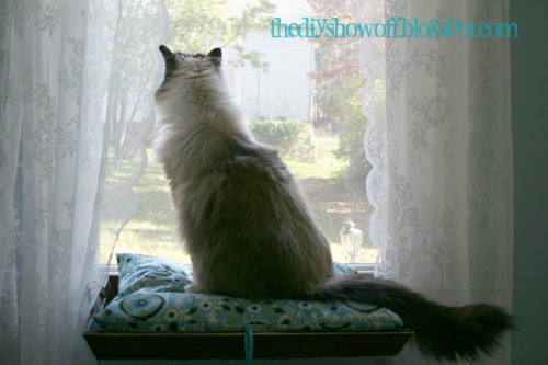 Step 17 How To Make a Window Seat For Your Kitty