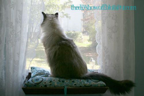 Kitty Window Seat – Step 17