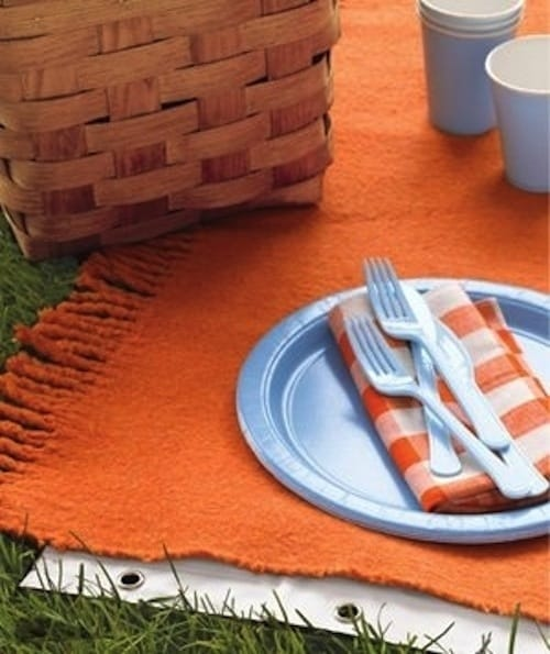 Use a Shower Curtain to Keep Your Picnic Blanket Dry