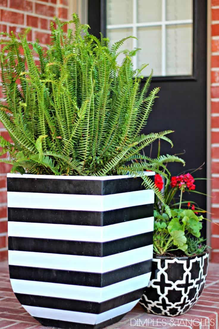 Black and white striped flower pots