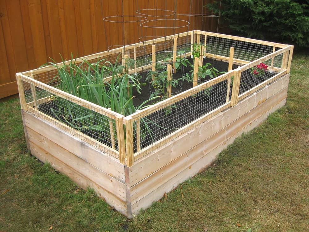 Garden Bed With A Pest Gate
