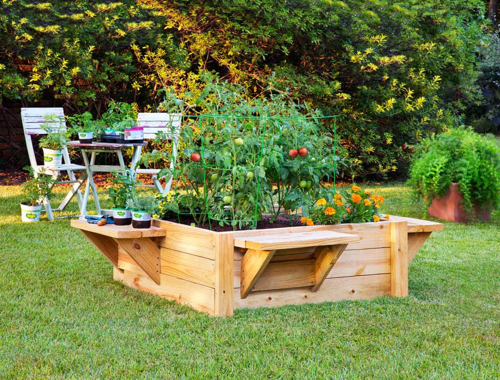 Garden Bed With Benches