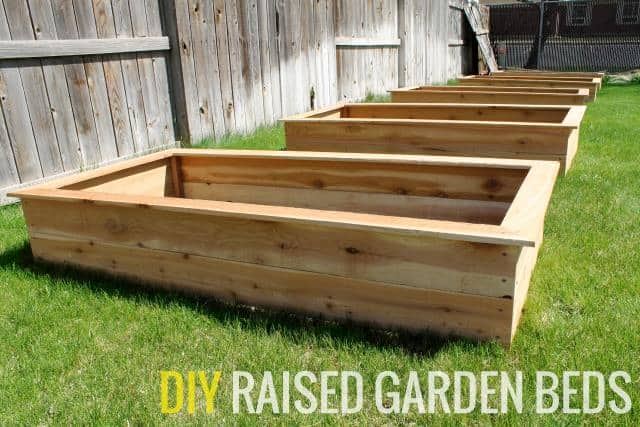 Garden Beds With Frame