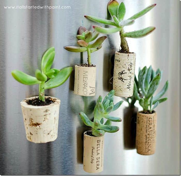 Mini Magnet Planters