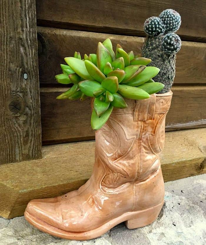 Old boot cactus planter