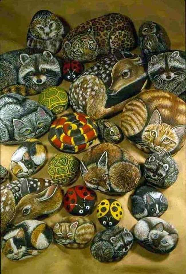Realistic animals - Rock Painting