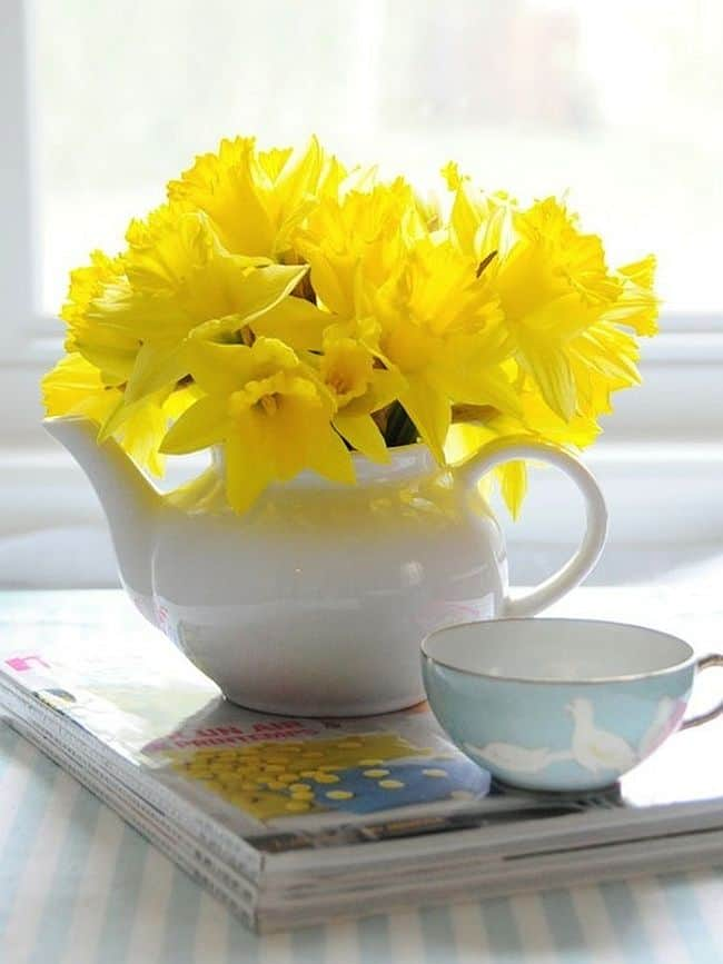 Refreshing Teapot flowers