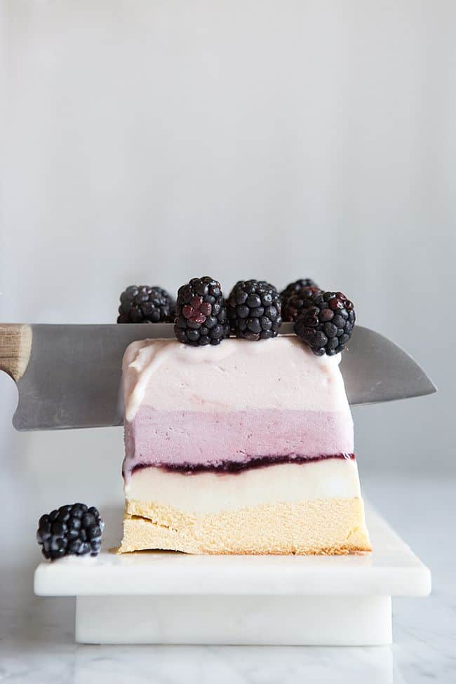 Summer Berry Ice Cream Cake
