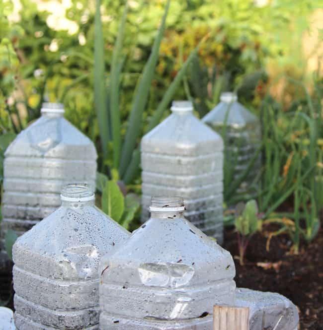 Instant mini greenhouse