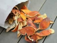 Orange peel fire starters 200x150 15 DIY Projects to Keep You Toasty Warm