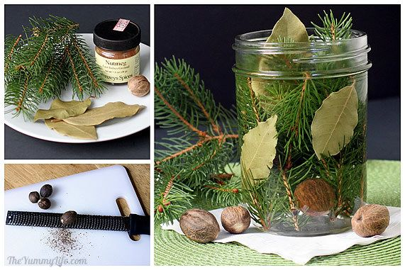 Pine, bay leaves, and nutmeg potpourri
