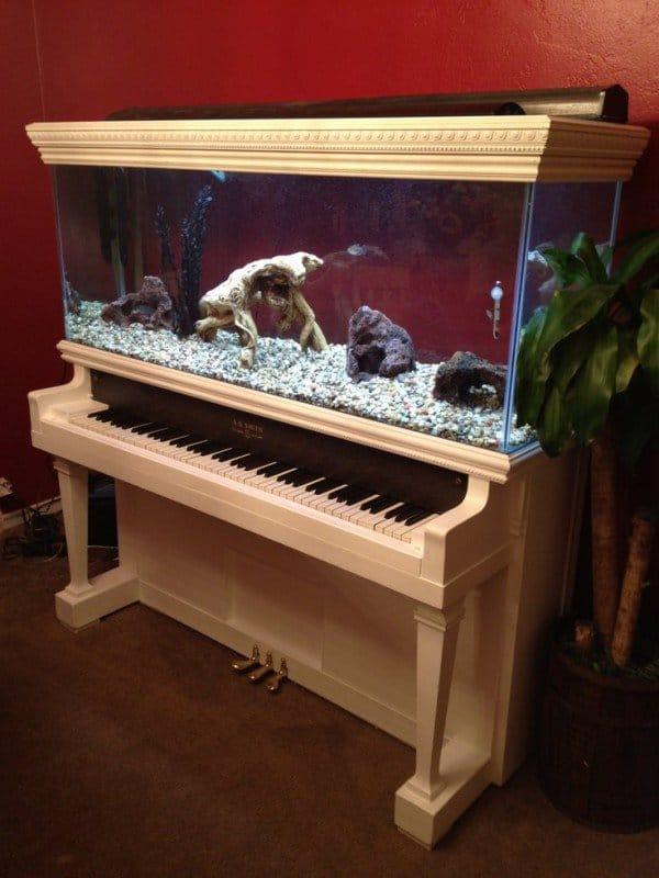 Standing piano aquarium