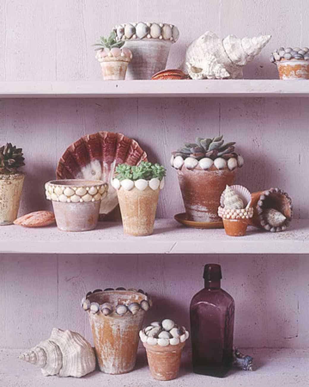 Seashell flowerpots