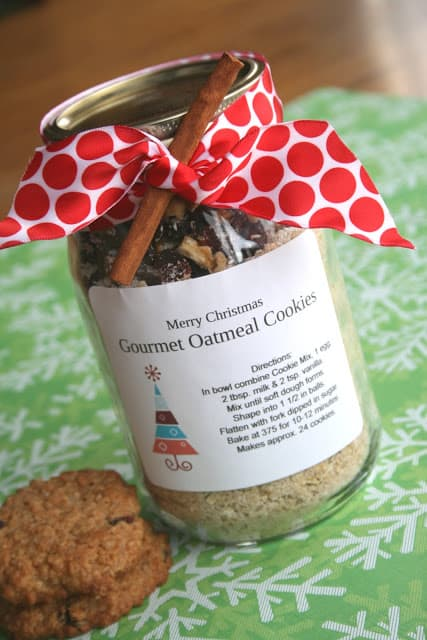Gourmet oatmeal cookie mix