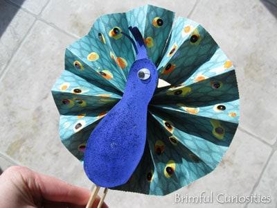 paper-fan-peacock
