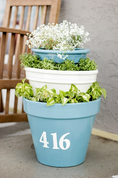 potted-plant-lot-number