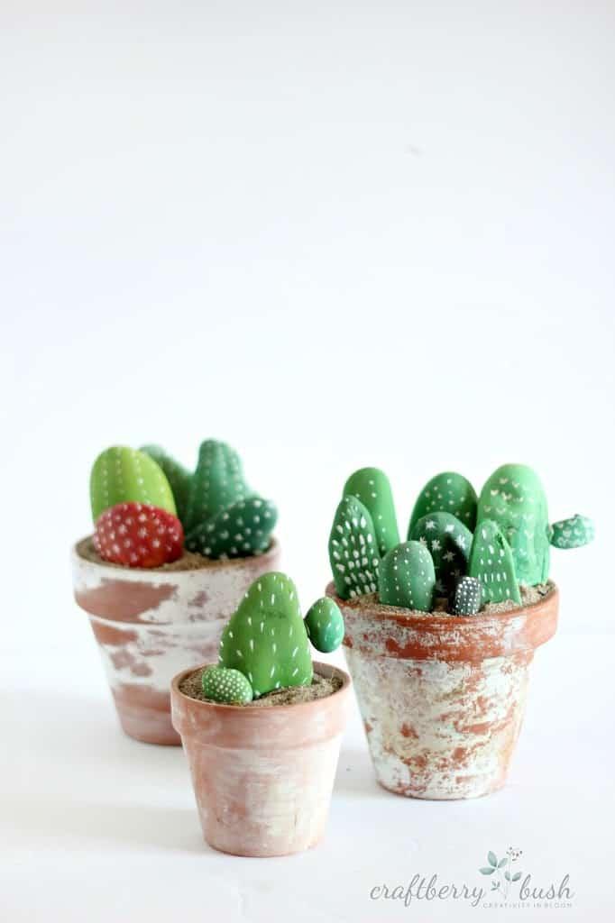 Cactus pebbles