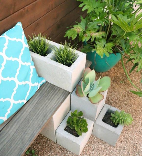 succulent bench