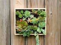vertical succulent planter 200x150 Succulent Heaven: Unique DIY Ways To Include Succulents Into Your Home
