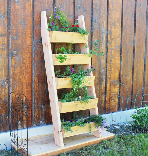 Ladder garden