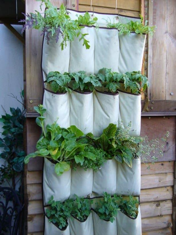 Pockets garden