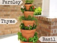 Vertical terra cotta garden 200x150 DIY Vertical Gardens for Unconventional Gardeners